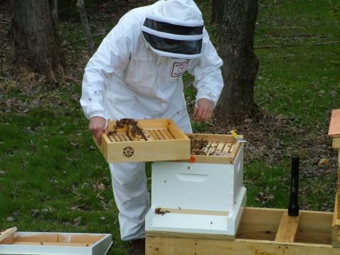 2005 winter,niagara,bees,summer,fisshing,NY 070.jpg